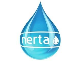 Dung dịch - Hóa chất rửa xe Nerta